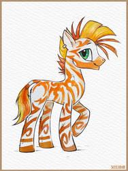 Zebra by Scheadar