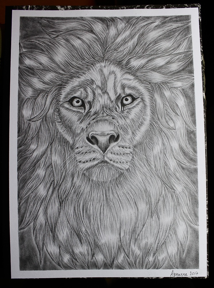 Lion by Aynarra