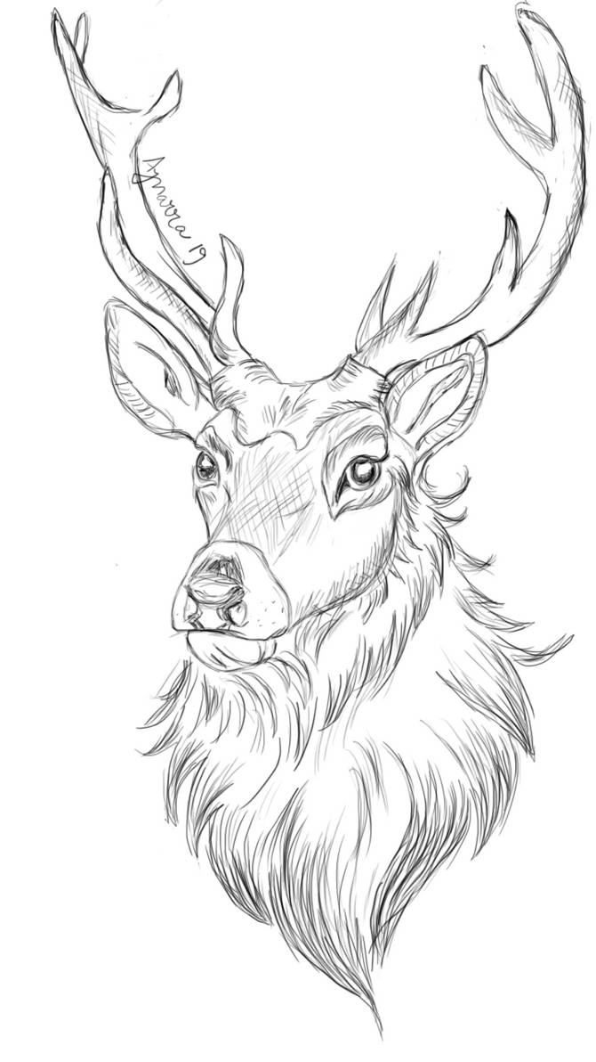 Oh dear, deer.. sketch January 2019