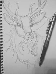 lovely deer sketch by Aynarra