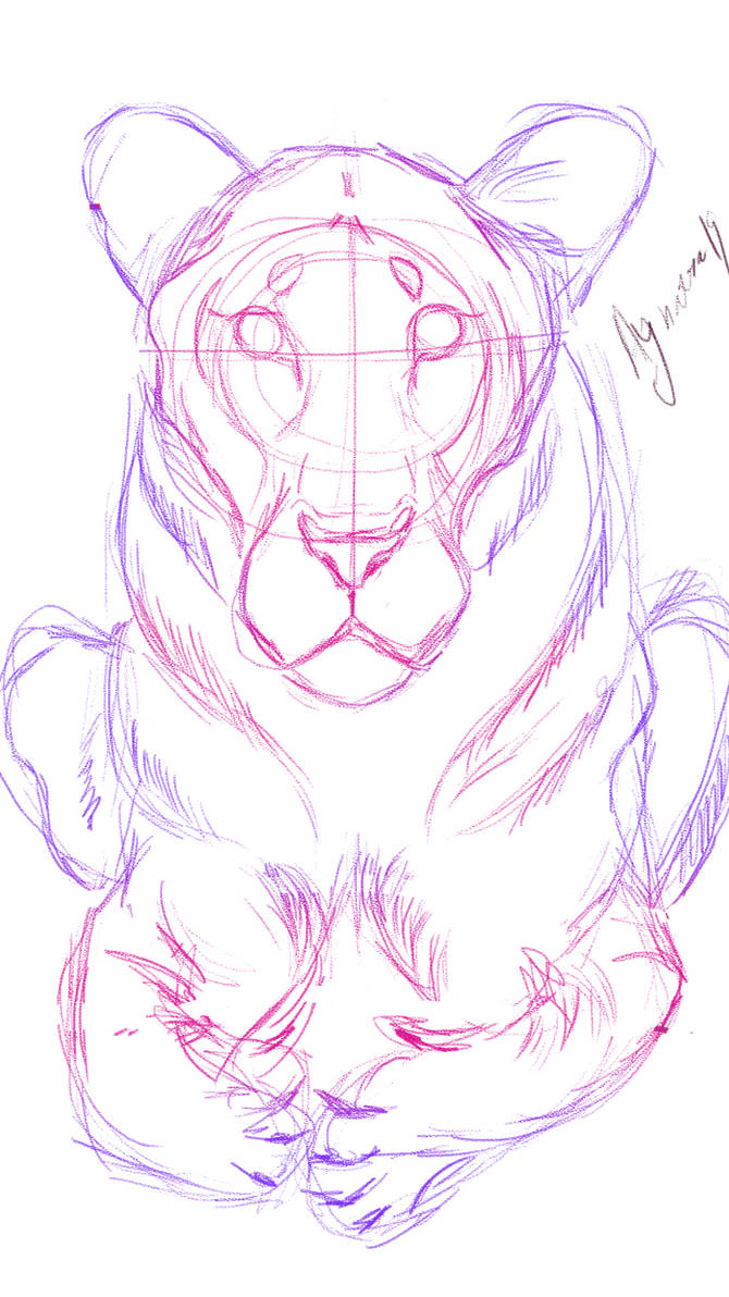 Weird lioness sketch by Aynarra