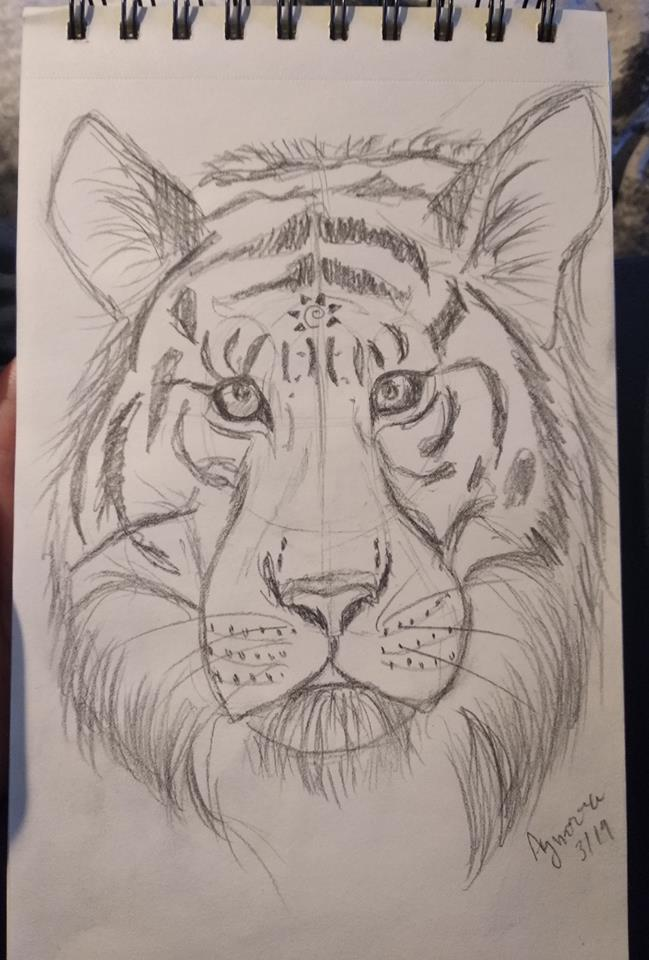Tiger - quick sketch by Aynarra