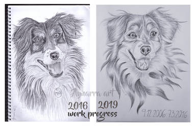 3 years progress