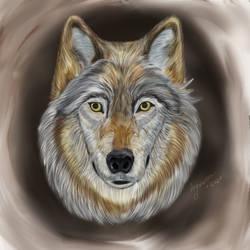 Wolf - January 2021