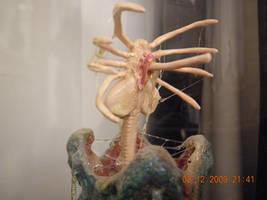 Alien facehugger emerging from egg 1