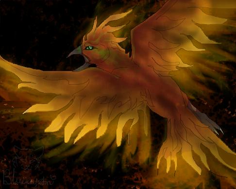 Phoenix by bluejaystarandspring