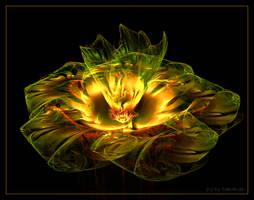 fleur... by FeliFee