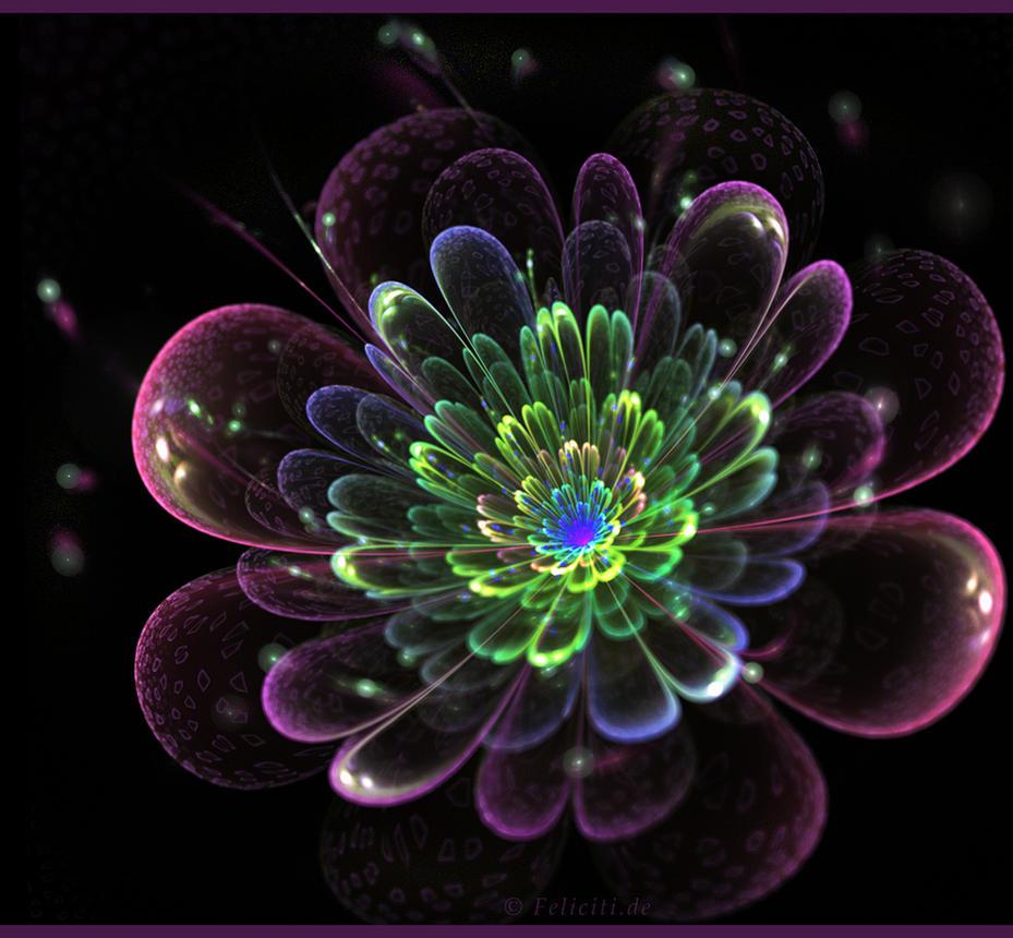 Fleur.... by FeliFee