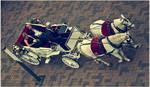 Marksmen Parade by FeliFee