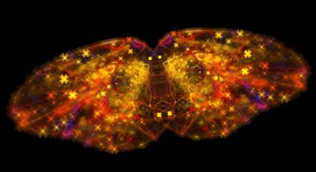 Butterfly... by FeliFee