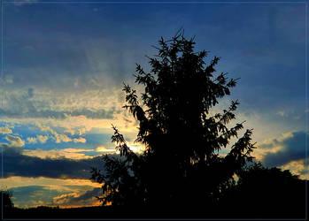 Sunrays... by FeliFee