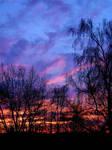 Xmas Sunrise... by FeliFee