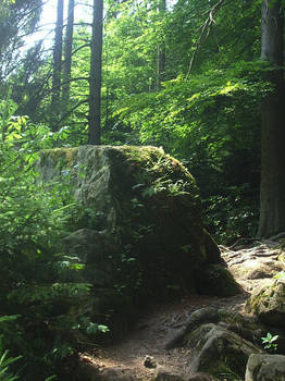 Path to Vanaheim.