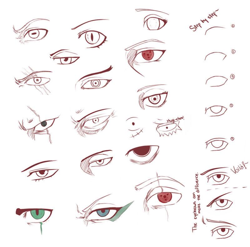 Eye References By Karichanus On Deviantart