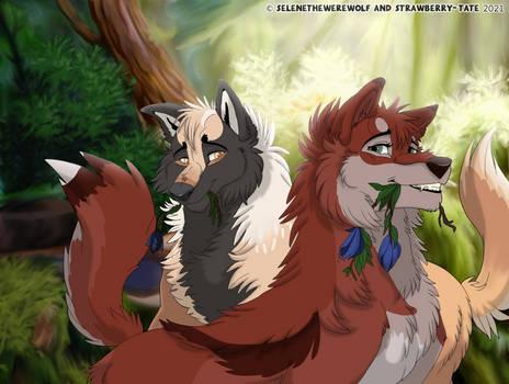 DOTW | Prim and Lokki: Grenmyrk Forest