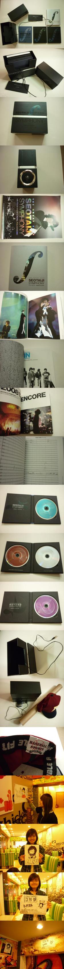 Seo Taiji the Great Symphony by meomeongungu