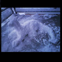 Snow Dragon Photo 1 by ShadowXEyenoom