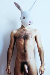 Where is my carrot? by ismaelalvarez