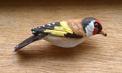 European Finch - side View