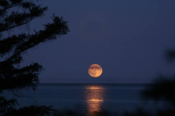 Harvest Moon by goldleaf09