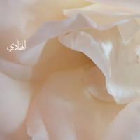 Al Hadi