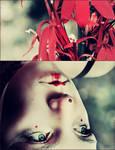 in a field of red by bailey--elizabeth