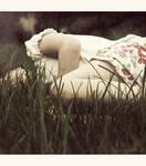 dreamland by bailey--elizabeth