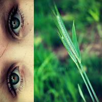 summer eyes by bailey--elizabeth
