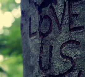 love us by bailey--elizabeth