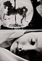 carousel dreams by bailey--elizabeth