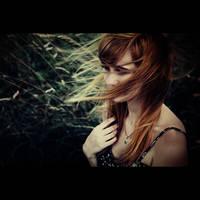 gust by bailey--elizabeth