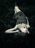 briar rose by bailey--elizabeth