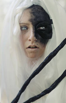 entity