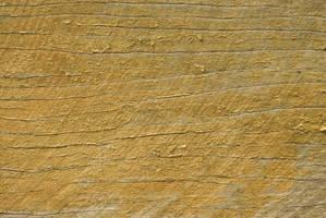 Wood Grain by Sleek-Stock