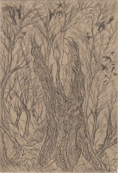 Postcard 6: The Arboracuda (Pencil)