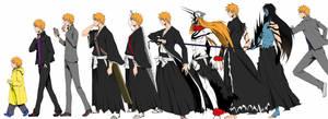 The evolution of Ichigo