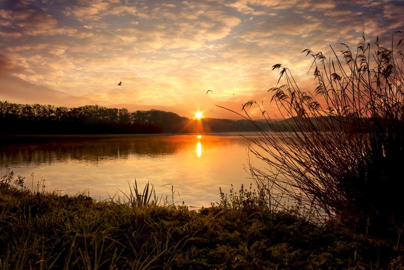 Sunrise pond Broumar_02