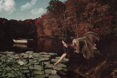 Lucid Dreams by Alegion