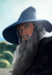 Gandalf the Grey by qbookfox