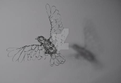 'Adam', the Wire Bird