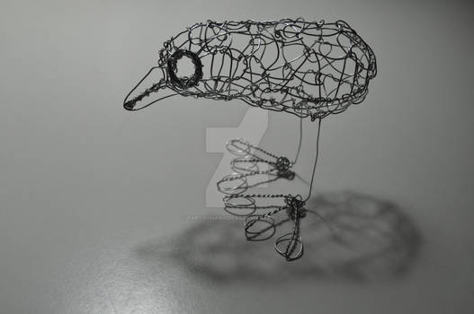 'Matt', the Wire Bird