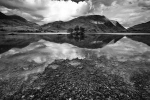 Quietly Reflective by taffmeister
