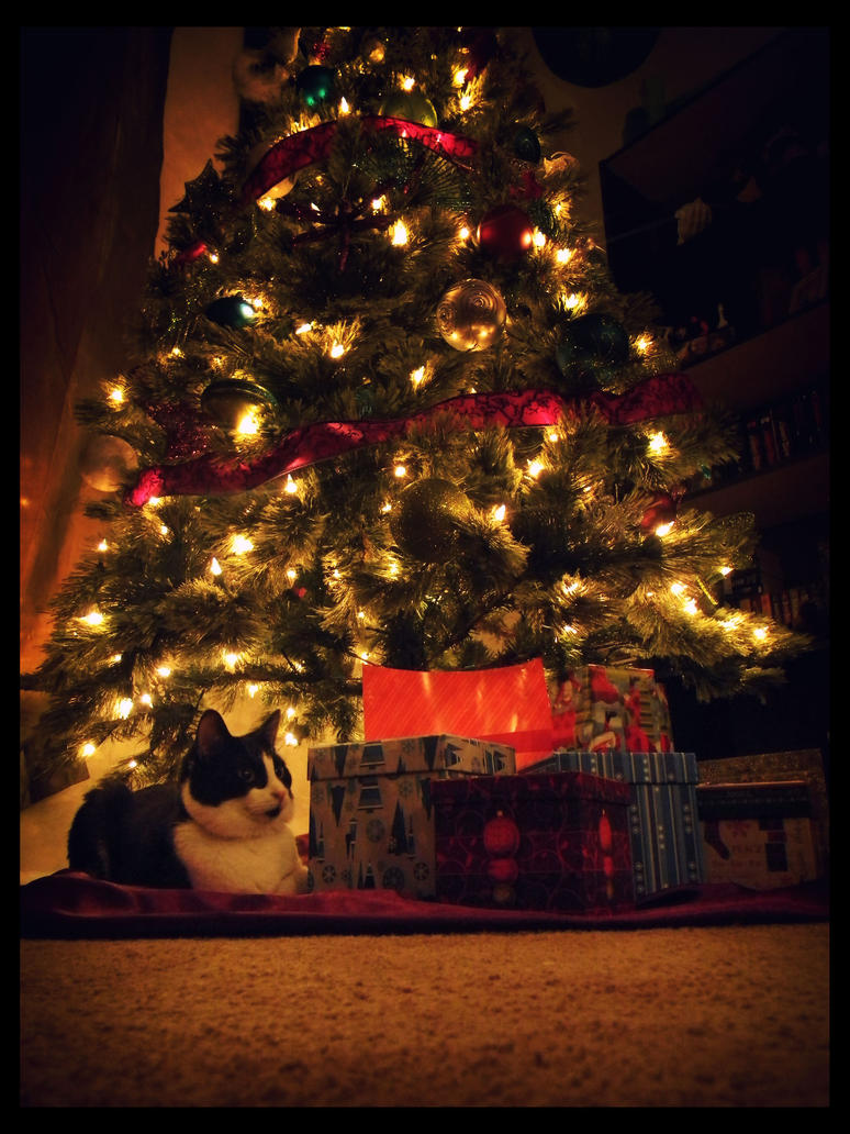 Christmas Kitties01 by sees2moons