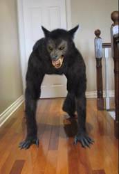 Werewolf X by Mago2007