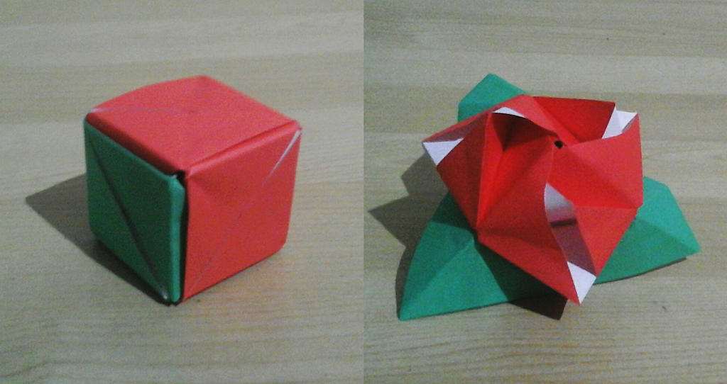 Origami Magic Rose Cube By Zeusii7 On Deviantart