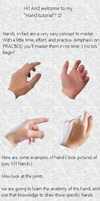 Hands tutorial-beginner