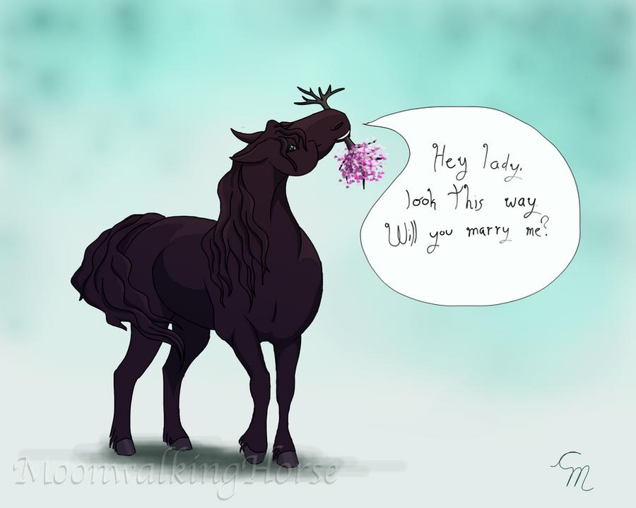 KT Tunstall - Big Black Horse And A Cherry Tree Lyrics ...