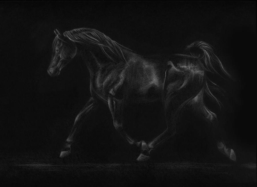 Ghost Rider by MoonwalkingHorse