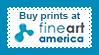 Fine Art America Lace Stamp