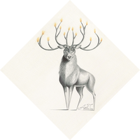 Chandeerlier (w/ Time Lapse Video)